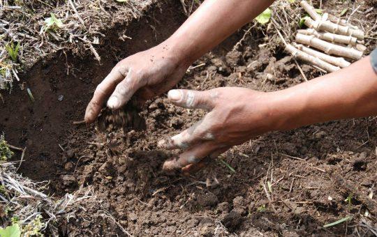 duurzame landbouw ecassef wmh