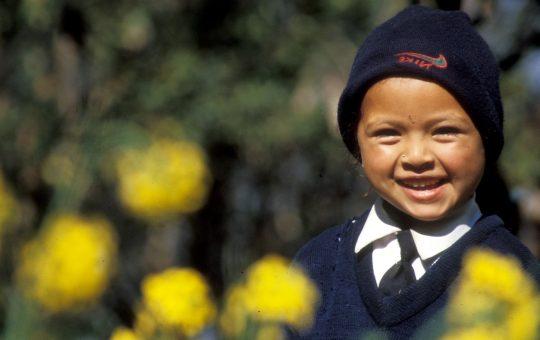 sarmila project nepal wmh